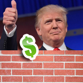 Donald Trump - Donate to the Wall Thumbnail
